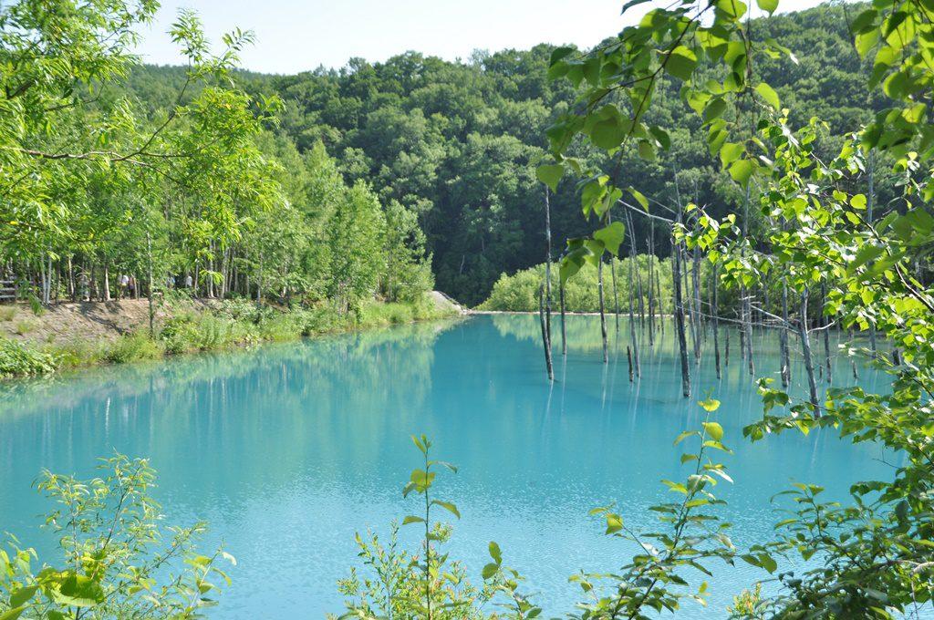 青い池(2)