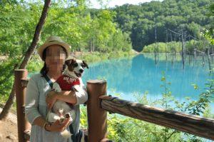 青い池とソラ、嫁
