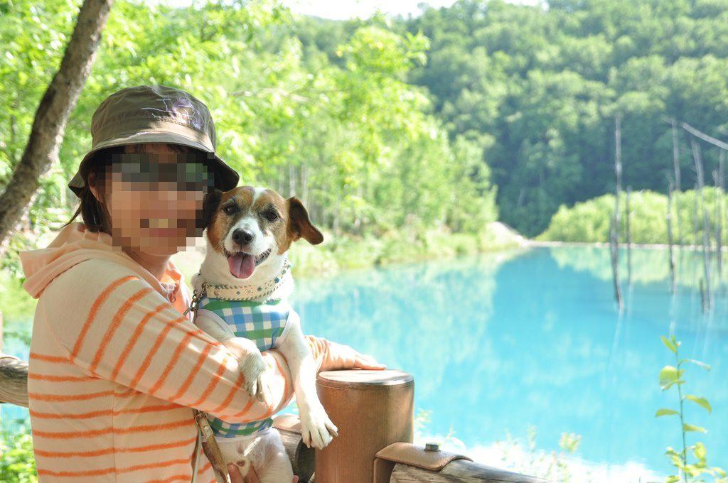 青い池とチェロ、チェロママ