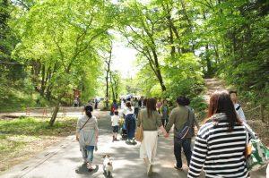 もうすぐ芝桜の公園