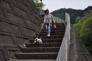 道の駅:大滝温泉から下ります