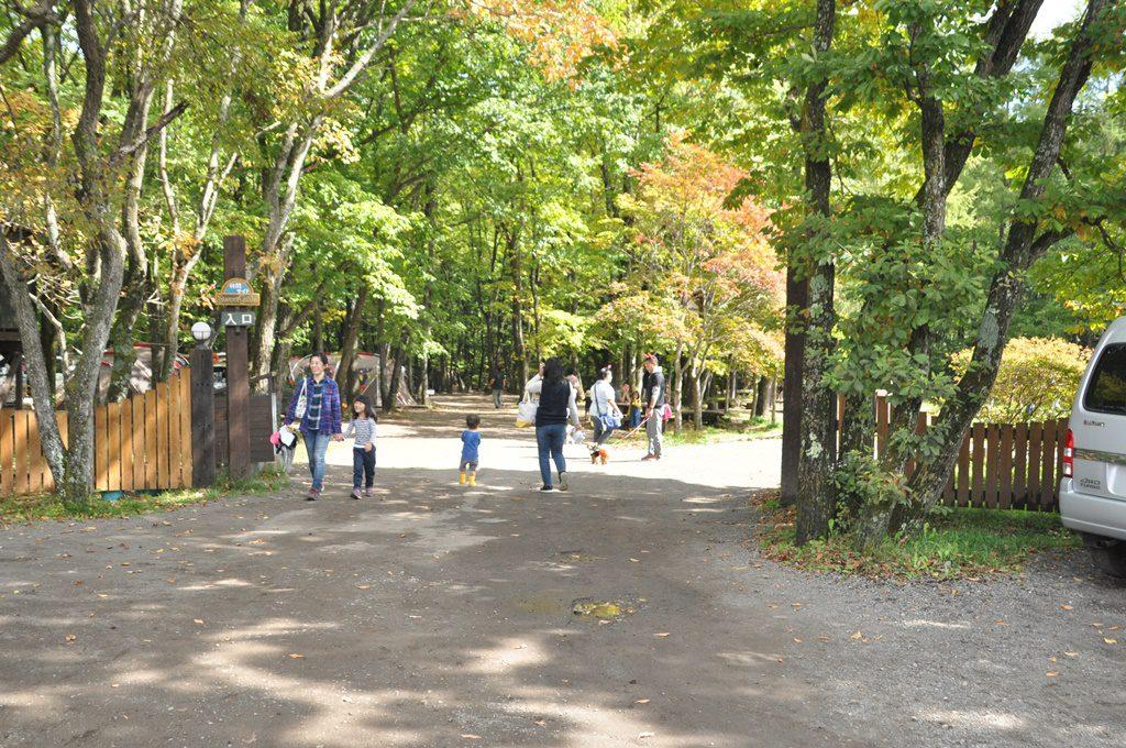 林間サイト入口