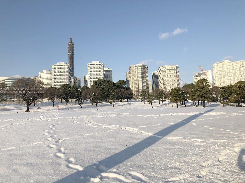 臨港パークも雪景色
