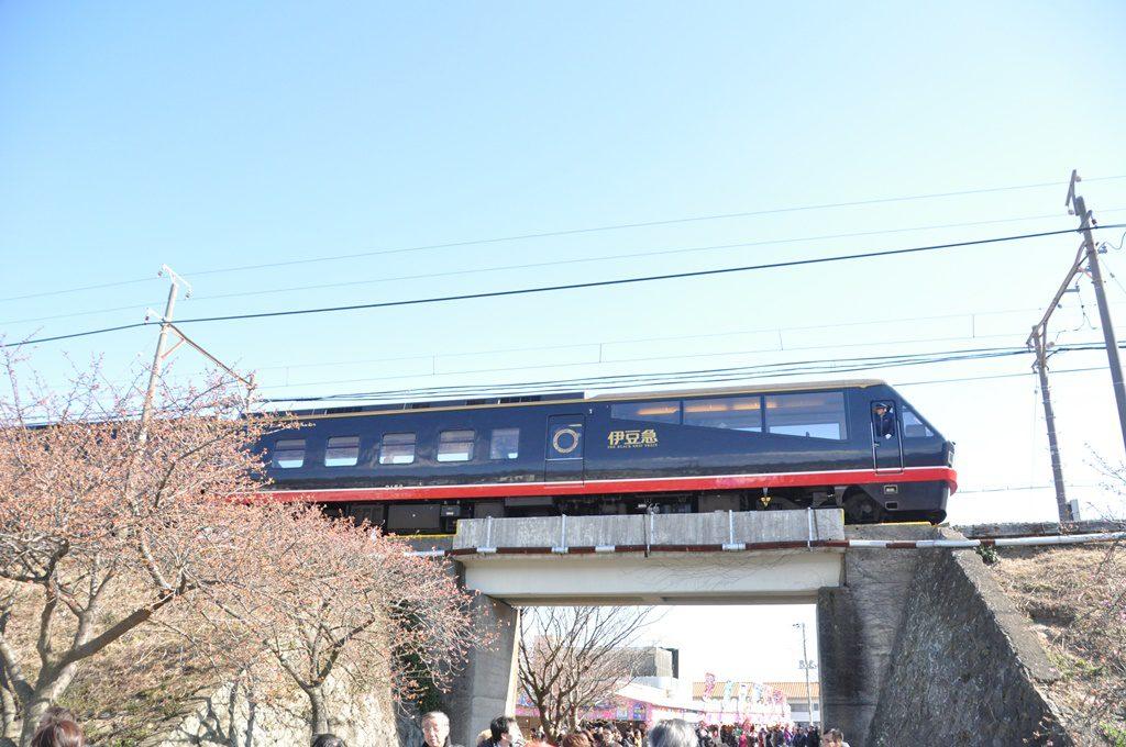 伊豆急の列車です。