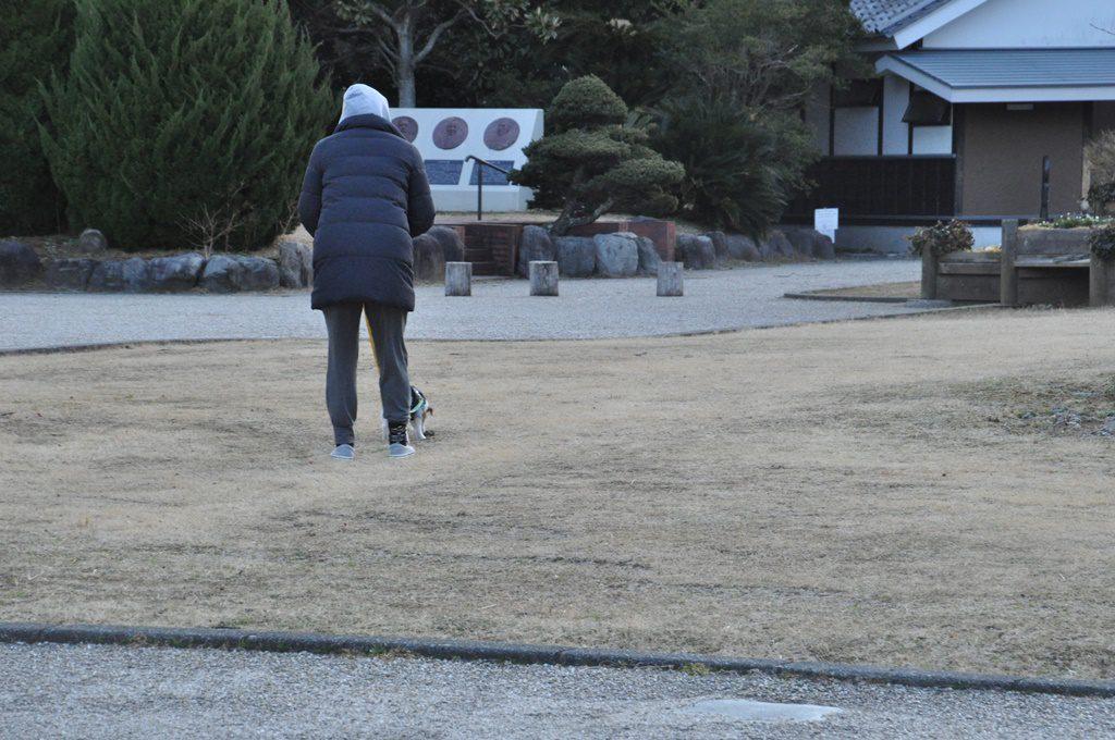 朝一、ヒンメルの散歩。