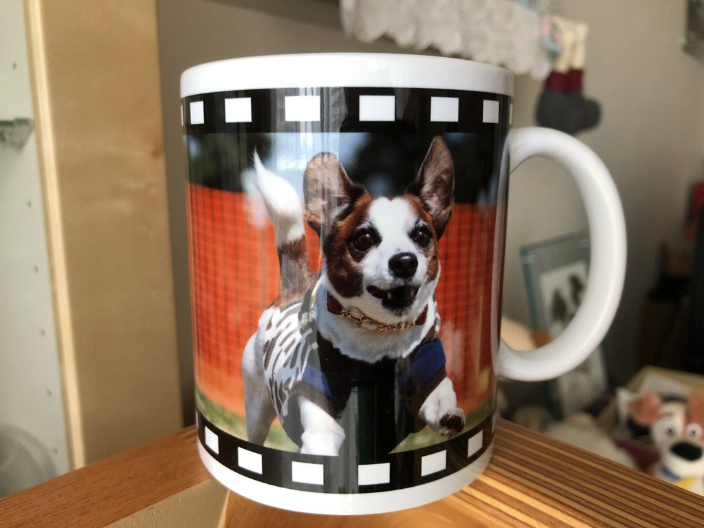 ソラのマグカップ