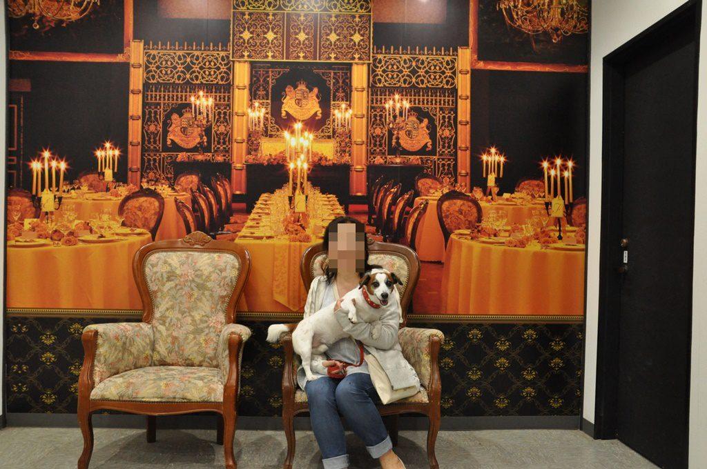 同じ建物に、記念撮影用に椅子がありました。