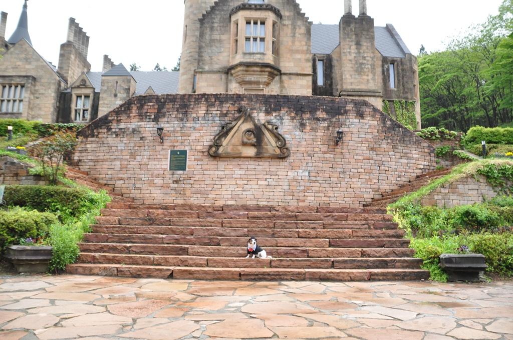お城の正面とソラ。