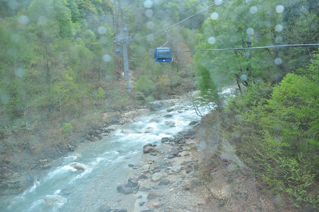 緑と川とゴンドラ、絵になりますね。