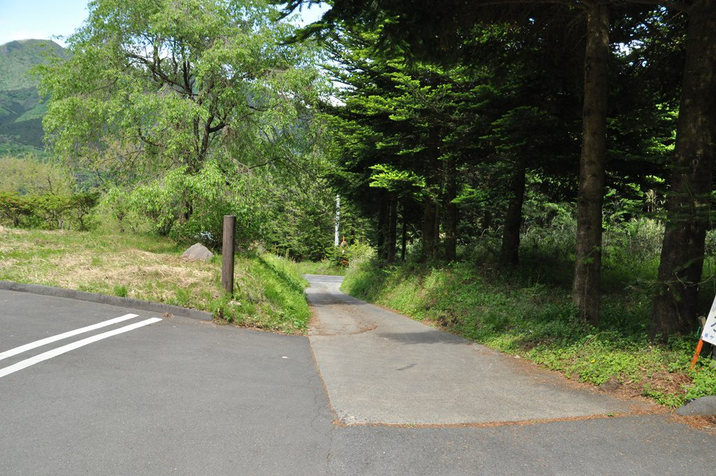 山道を最後まで上ります。
