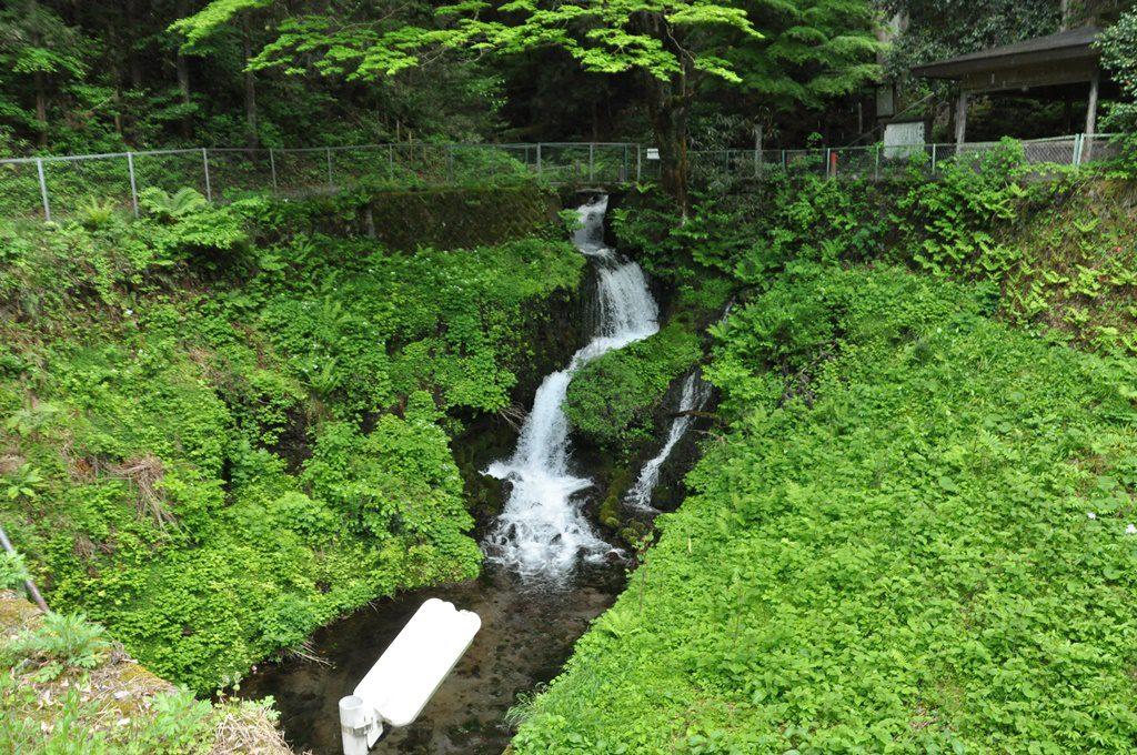 豊富な水量の水が流れています。