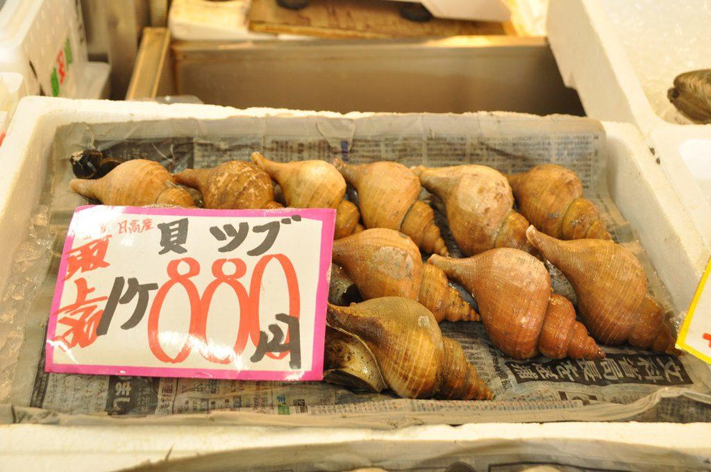北海道ならではの「ツブ貝」です。