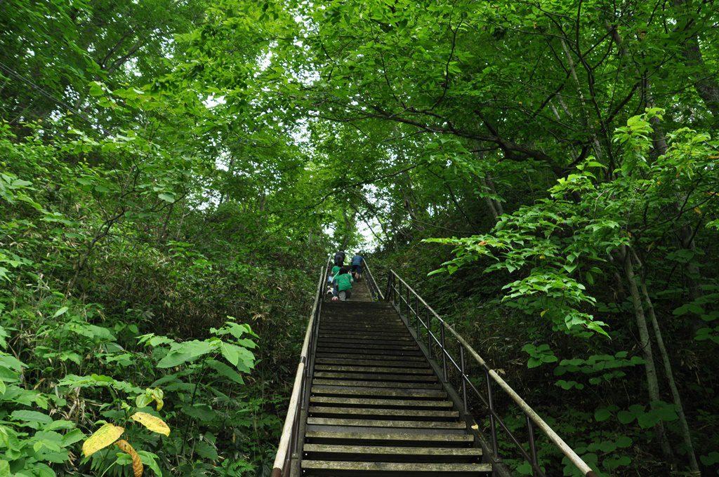 キツイ登りの階段。この上が駐車場です。