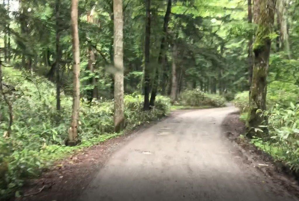 入口まで続く凹凹の道のへこみを避けながら進みます。