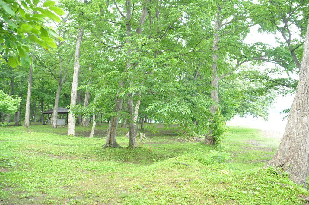 第一キャンプ場の湖畔