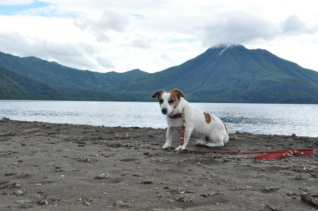 支笏湖をバックに記念撮影。