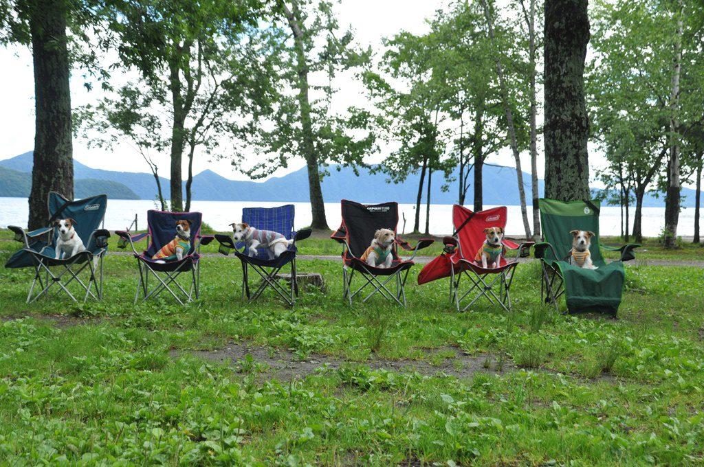支笏湖をバックに。ソラ、シュテルン、ヒンメル、ナハト、モント、FIONA。