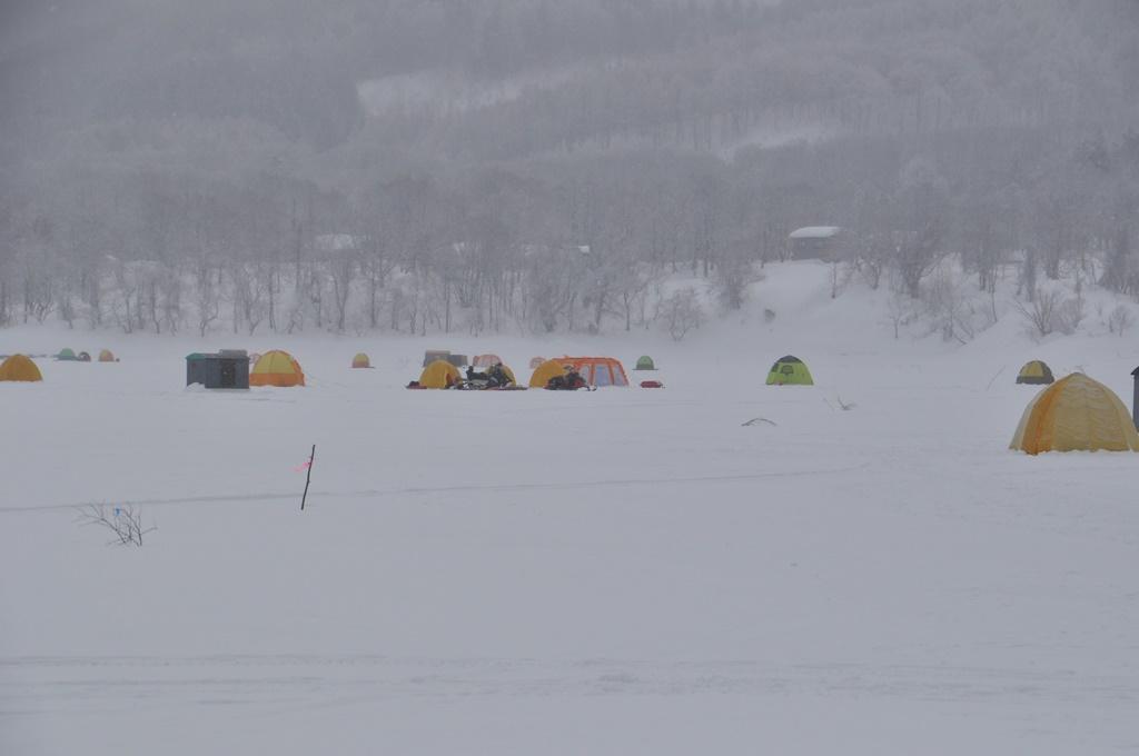 思い思いにテントを設営しています。防寒対策万全です。