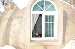 コテージの窓です。